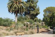 Fullerton-Arboretum 1 (1)